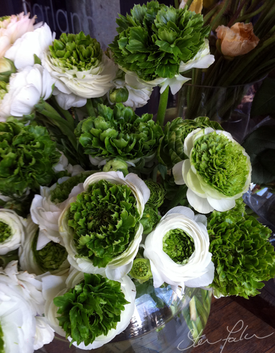Green & white ranunculus